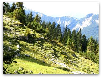 bavarian-alps-walking