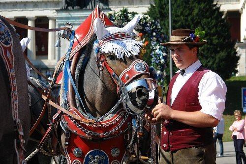 munich-oktoberfest-2013-horse