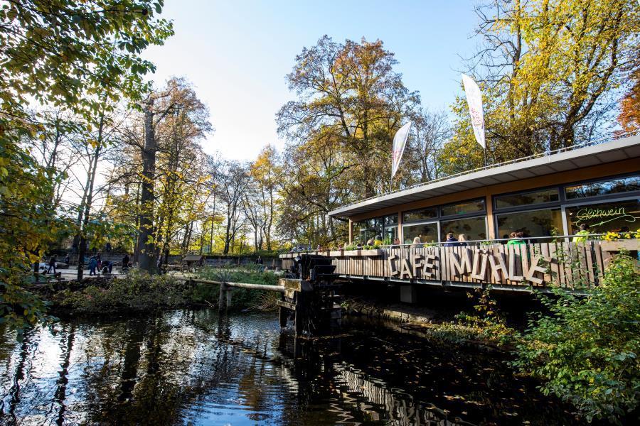 munich-zoo-cafe
