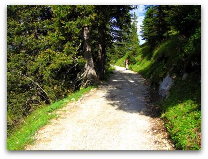 path-to-ludwigs-konigshaus