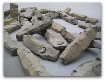 Pinakothek der Moderne rocks
