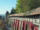 viator-harburg-tour