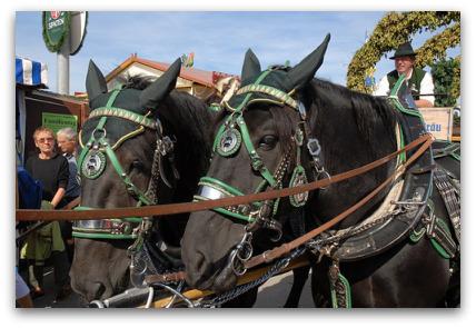 oktoberfest-horses-parade