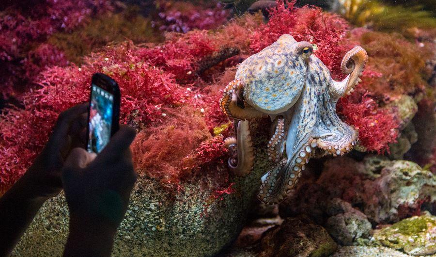 Aquarium-Tierpark-Hellabrunn