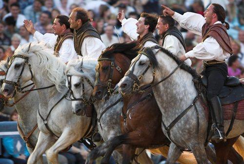 horsemen of the north